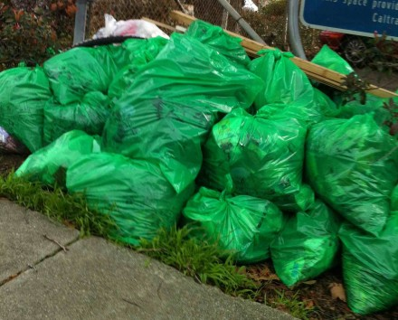 1-230Lbs of Litter